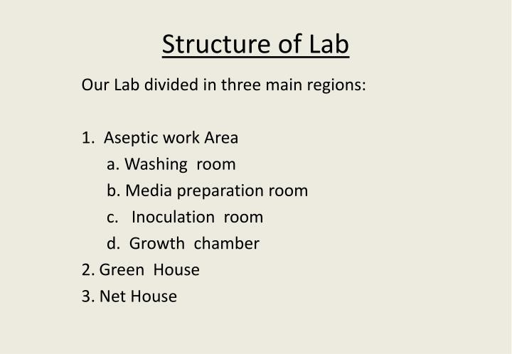 structure of lab n.