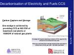 decarbonisation of electricity and fuels ccs