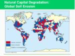 natural capital degradation global soil erosion