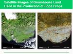 satellite images of greenhouse land used in the production of food crops