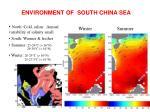 environment of south china sea3