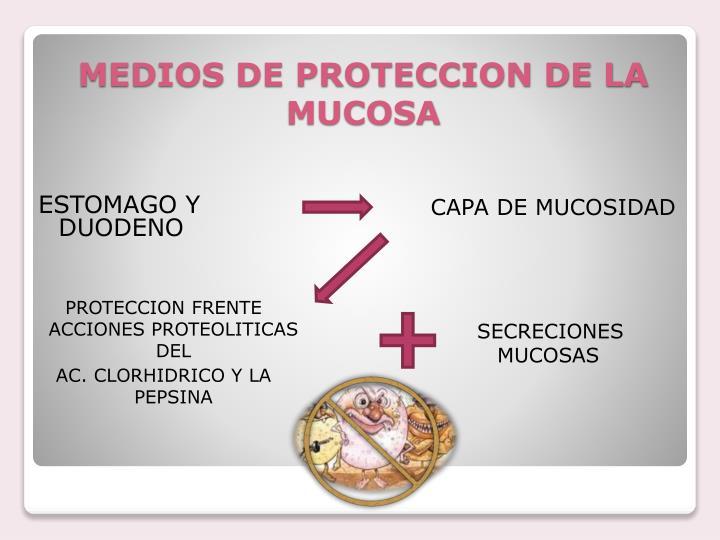 Medios de proteccion de la mucosa