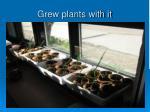 grew plants with it