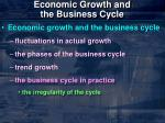 economic growth and the business cycle4