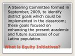 what is equity initiatives