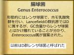 genus enterococcus1