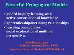 powerful pedagogical models