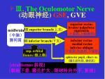 the oculomotor nerve gse gve
