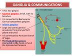 ganglia communications