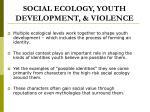 social ecology youth development violence
