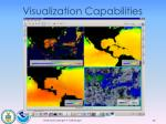 visualization capabilities