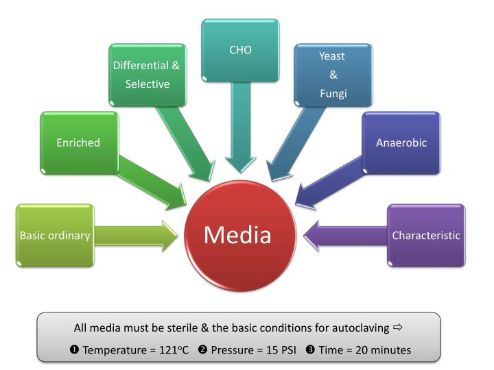 All media must be sterile & the basic conditions for autoclaving