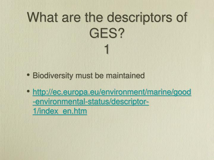 What are the descriptors of  GES?