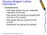 choosing widgets to enter information2