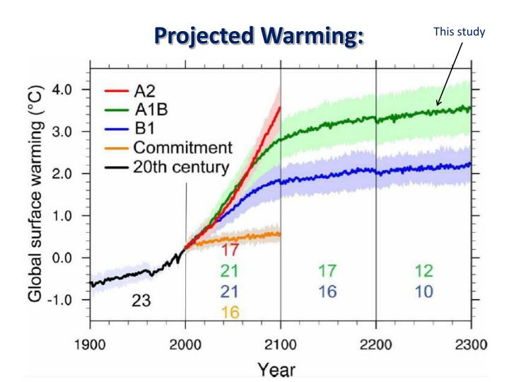Projected Warming: