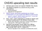 cheas upscaling test results3