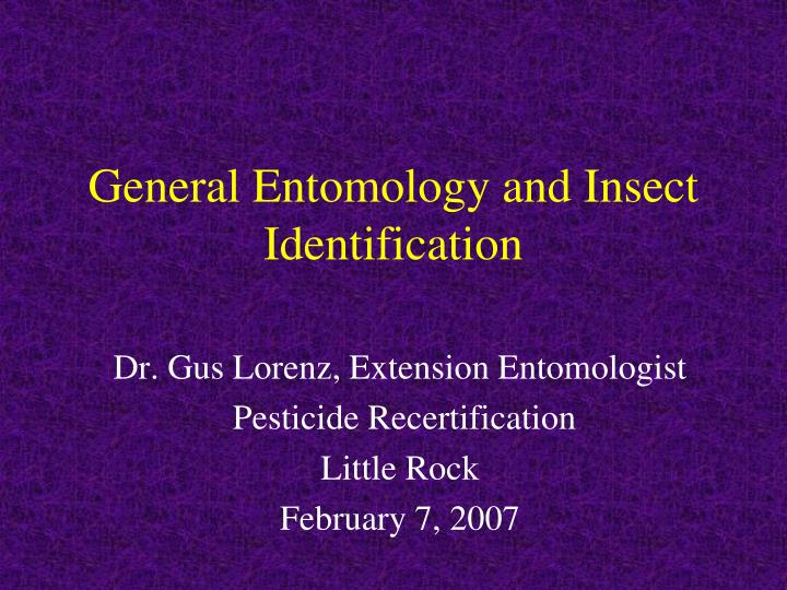 general entomology and insect identification n.