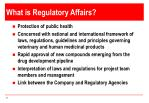 what is regulatory affairs