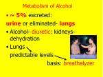 metabolism of alcohol1