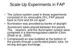 scale up experiments in fap1
