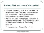 project risk and cost of the capital