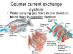 counter current exchange system