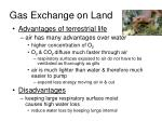gas exchange on land