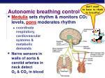 autonomic breathing control