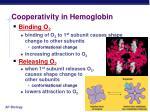 cooperativity in hemoglobin