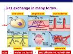 gas exchange in many forms