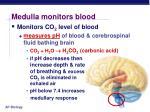 medulla monitors blood