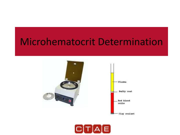 microhematocrit determination n.