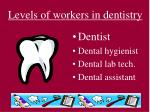 levels of workers in dentistry