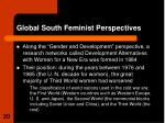global south feminist perspectives