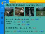 multiple instance learning mil