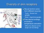 diversity of skin receptors