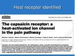 heat receptor identified