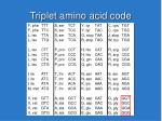 triplet amino acid code
