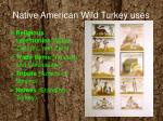 native american wild turkey uses3