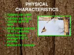 physical characteristics2