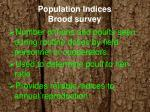 population indices brood survey