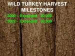 wild turkey harvest milestones1