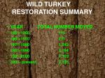 wild turkey restoration summary
