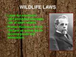 wildlife laws