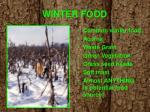 winter food