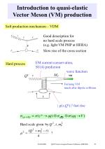 introduction to quasi elastic vector meson vm production