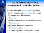 action needed influencing consumption production patterns