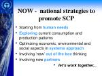 now national strategies to promote scp