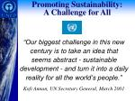 promoting sustainability a challenge for all
