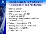 training agenda on sustainable consumption and production